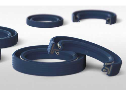 Rotary Shaft Seals