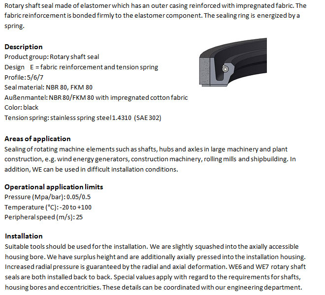 Rotary Shaft Seal Profile - WE 6 FKM